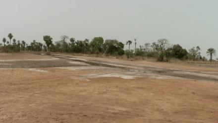 Conversations Across the Creek: Landscape Regeneration in Australia and Beyond